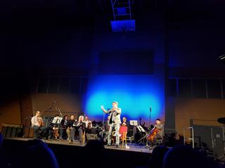 23.2.2017 - Benefiční vystoupeni pro DPN Opařany a FN Plzeň Ivánku, kamaráde, můžeš mluvit? Petr Čtvrtníček a Jiří Lábus